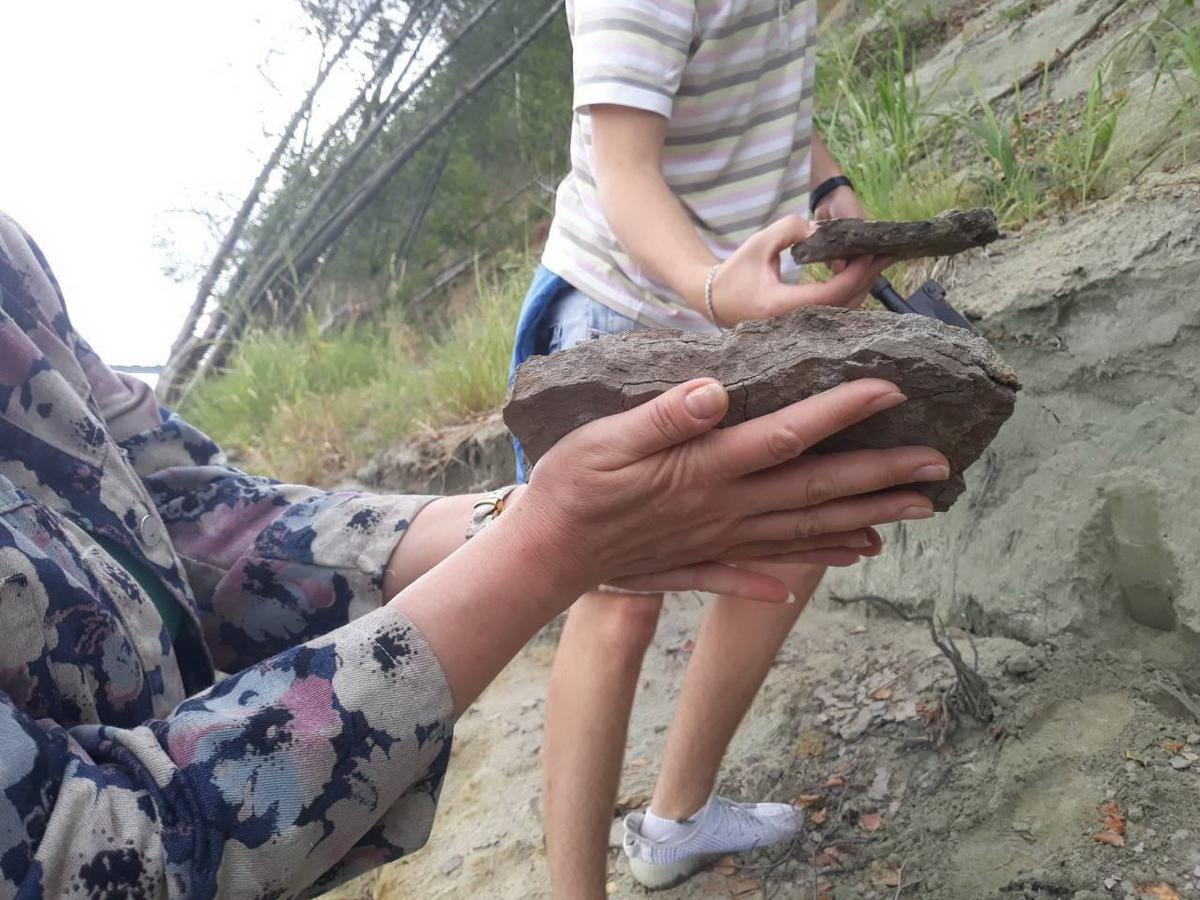 Геологическая практика или незабываемые приключения в горах 22_otobrannye_obrazcy_gornoy_porody.jpg
